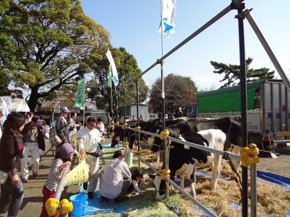 小田原市農業まつり